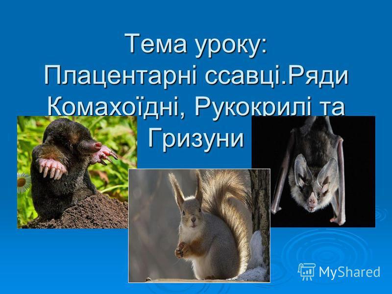 Тема уроку: Плацентарні ссавці.Ряди Комахоїдні, Рукокрилі та Гризуни