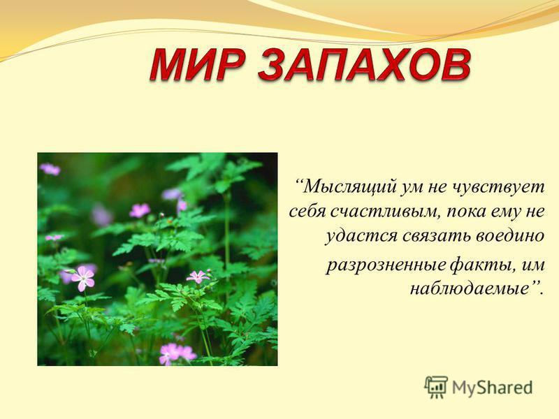 Мыслящий ум не чувствует себя счастливым, пока ему не удастся связать воедино разрозненные факты, им наблюдаемые.