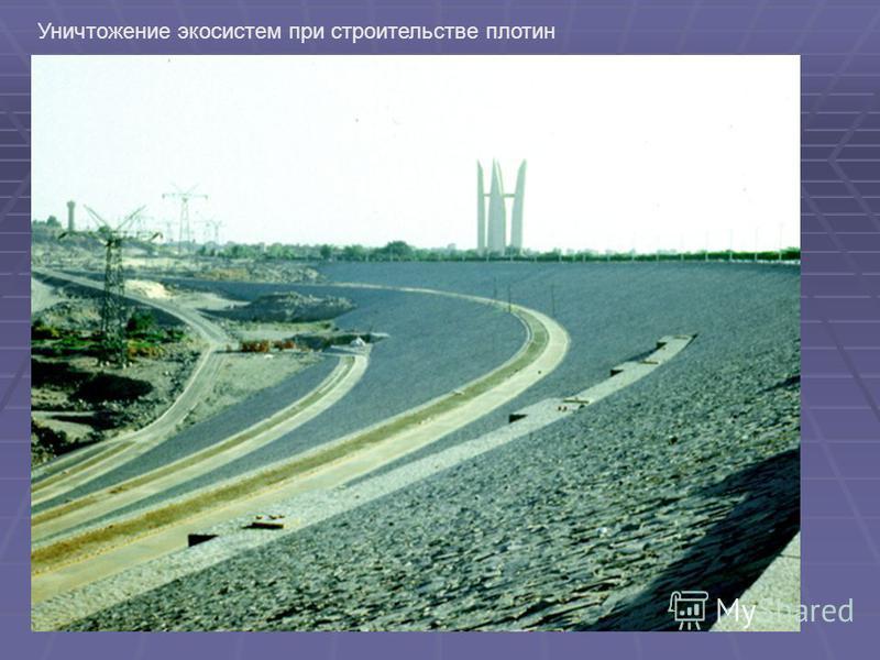 Уничтожение экосистем при строительстве плотин