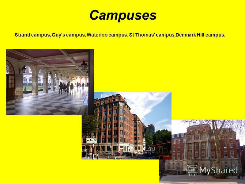 Campuses Strand campus, Guy's campus, Waterloo campus, St Thomas' campus,Denmark Hill campus.