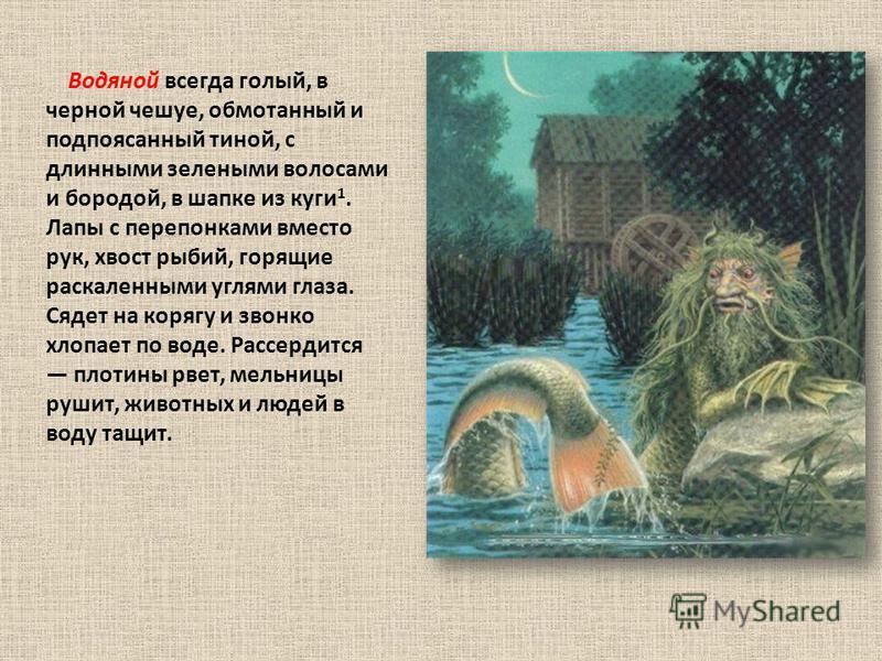 Водяной всегда голый, в черной чешуе, обмотанный и подпоясанный тиной, с длинными зелеными волосами и бородой, в шапке из куги 1. Лапы с перепонками вместо рук, хвост рыбий, горящие раскаленными углями глаза. Сядет на корягу и звонко хлопает по воде.