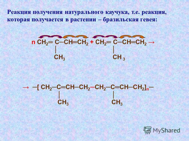 Реакция получения натурального каучука, т.е. реакция, которая получается в растении – бразильская гевея: n СН 2 ССНСН 2 + СН 2 ССНСН 2 СН 3 СН 3 [ СН 2 ССНСН 2СН 2 ССНСН 2 ] n СН 3 СН 3