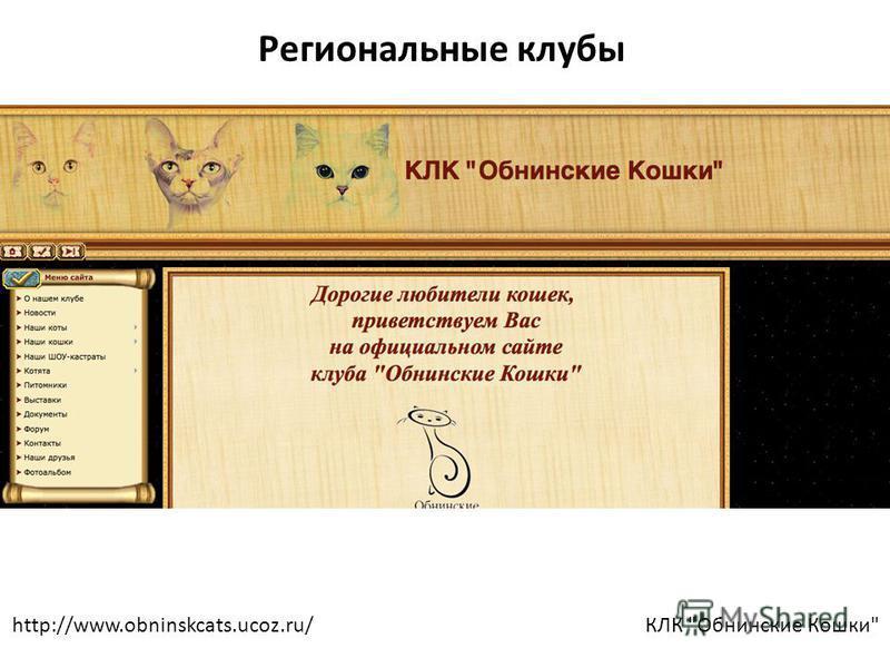 http://www.obninskcats.ucoz.ru/КЛК Обнинские Кошки Региональные клубы