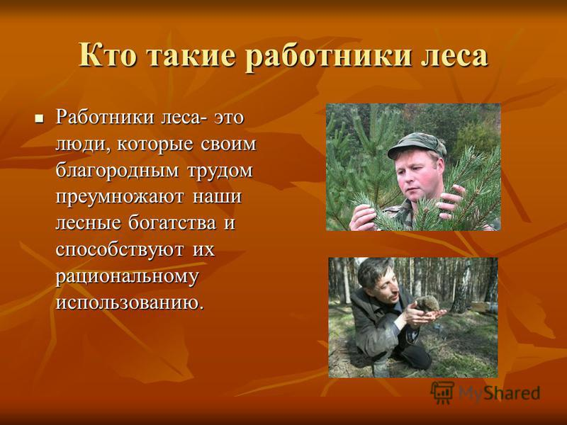 Кто такие работники леса Работники леса- это люди, которые своим благородным трудом преумножают наши лесные богатства и способствуют их рациональному использованию. Работники леса- это люди, которые своим благородным трудом преумножают наши лесные бо