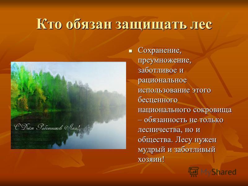 Кто обязан защищать лес Сохранение, преумножение, заботливое и рациональное использование этого бесценного национального сокровища – обязанность не только лесничества, но и общества. Лесу нужен мудрый и заботливый хозяин! Сохранение, преумножение, за