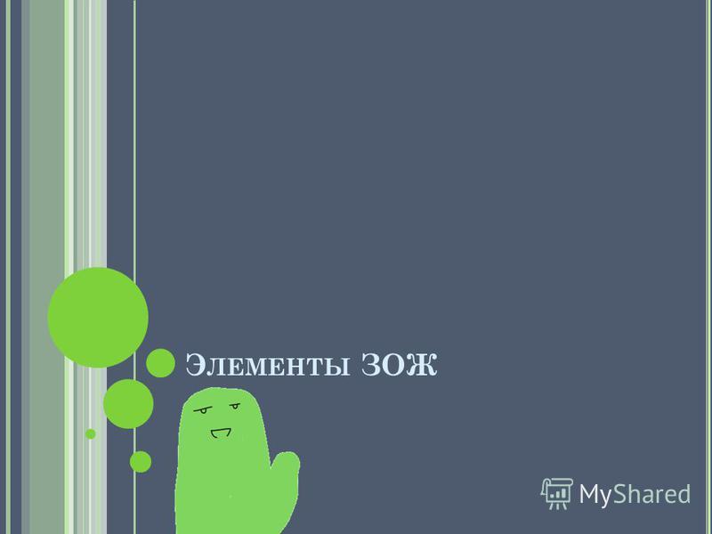 Э ЛЕМЕНТЫ ЗОЖ