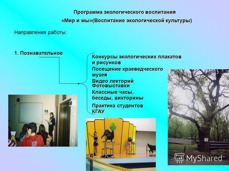 программа воспитание здорового образа жизни