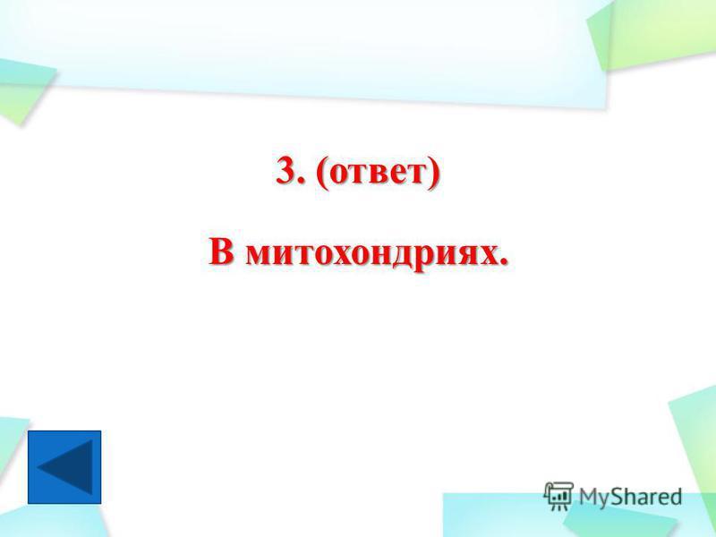 3. (ответ) В митохондриях.