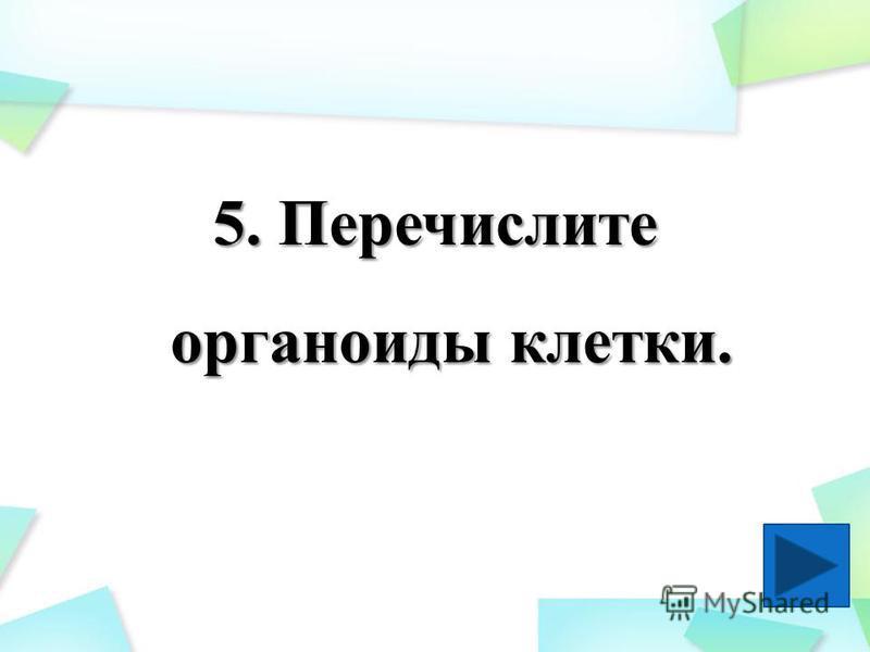 5. Перечислите органоиды клетки.