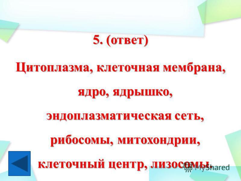 5. (ответ) Цитоплазма, клеточная мембрана, ядро, ядрышко, эндоплазматическая сеть, рибосомы, митохондрии, клеточный центр, лизосомы.