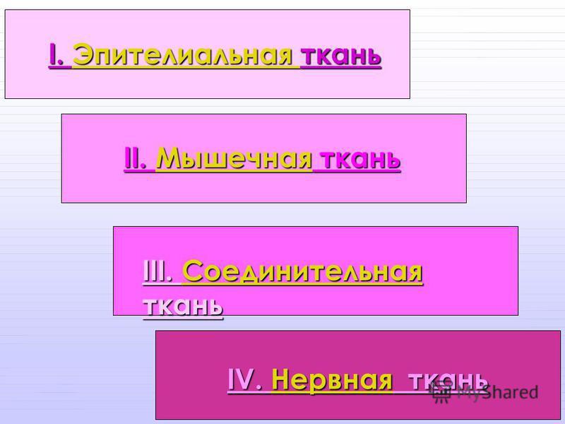 IV. Нервная ткань IV. Нервная ткань I. Эпителиальная ткань I. Эпителиальная ткань II. Мышечная ткань Мышечная III. Соединительная ткань Соединительная Соединительная
