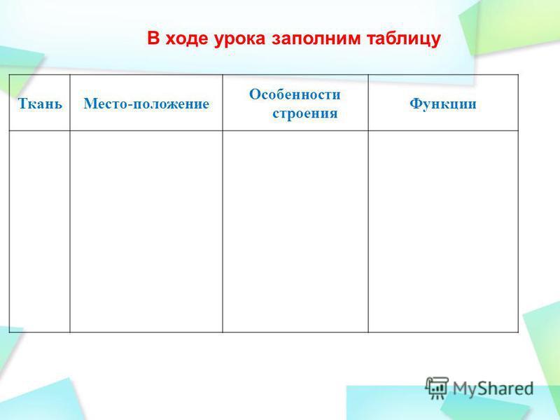 Ткань Место-положение Особенности строения Функции В ходе урока заполним таблицу