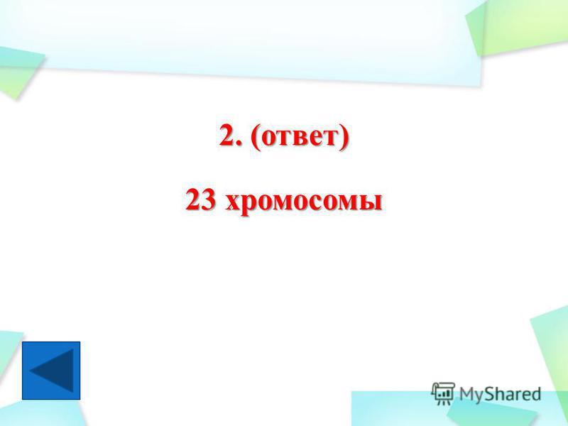 2. (ответ) 23 хромосомы