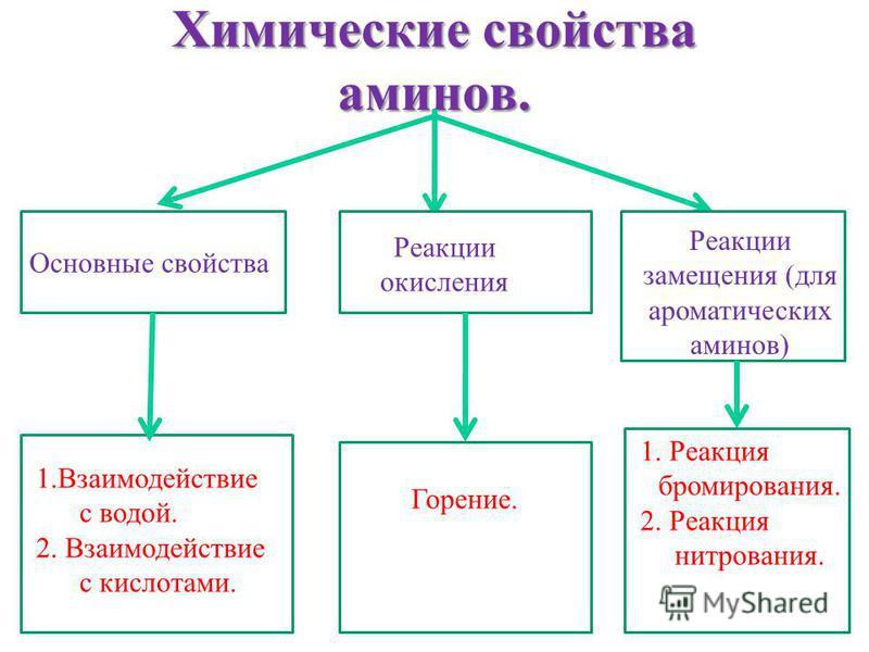 Химические свойства аминов. Основные свойства Реакции окисления Реакции замещения (для ароматических аминов) 1. Взаимодействие с водой. 2. Взаимодействие с кислотами. Горение. 1. Реакция бромирования. 2. Реакция нитрования.