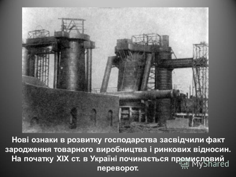 Нові ознаки в розвитку господарства засвідчили факт зародження товарного виробництва і ринкових відносин. На початку ХІХ ст. в Україні починається промисловий переворот.