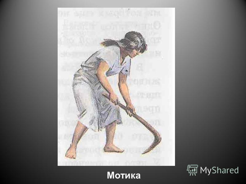 Мотика