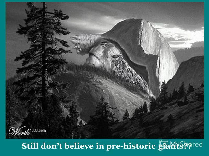 Still dont believe in pre-historic giants??