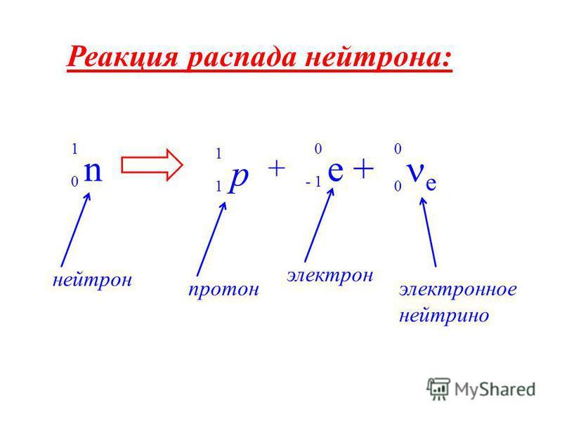 Реакция распада нейтрона: n 1 0 p 1 1 e + 0 - 1 e 0 0 + нейтрон протон электронное нейтрино электрон