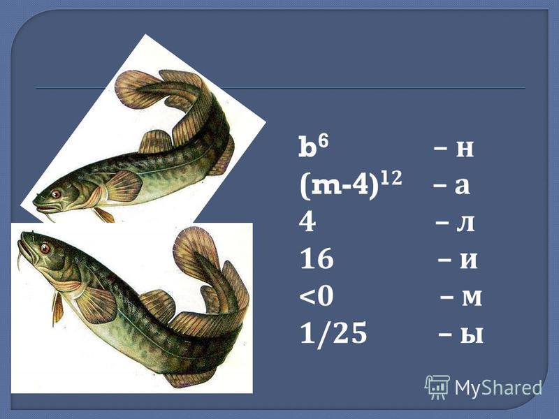 b 6 – н ( m-4) 1 2 – а 4 – л 16 – и <0 – м 1/25 – ы
