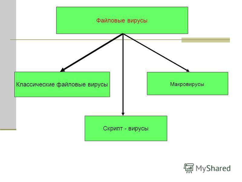 Файловые вирусы Классические файловые вирусы Макровирусы Скрипт - вирусы