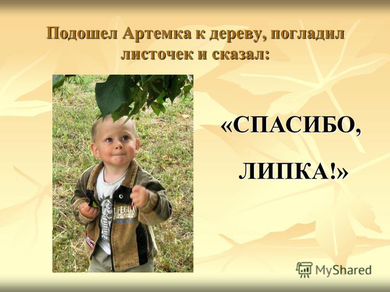 Подошел Артемка к дереву, погладил листочек и сказал: «СПАСИБО, ЛИПКА!» ЛИПКА!»