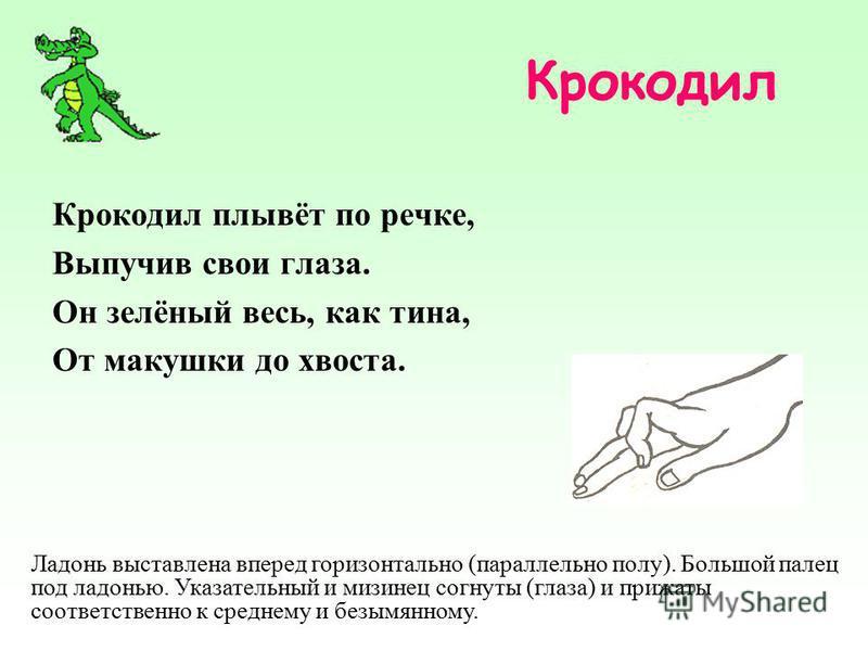 Крокодил Крокодил плывёт по речке, Выпучив свои глаза. Он зелёный весь, как тина, От макушки до хвоста. Ладонь выставлена вперед горизонтально (параллельно полу). Большой палец под ладонью. Указательный и мизинец согнуты (глаза) и прижаты соответстве