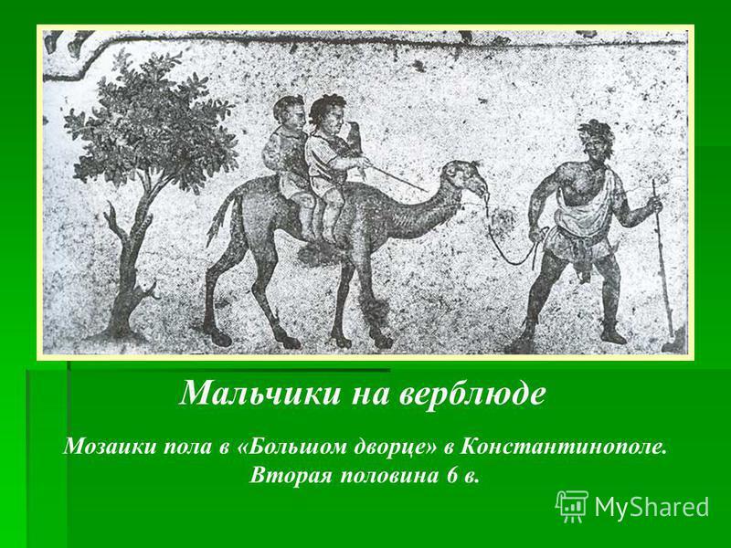 Мальчики на верблюде Мозаики пола в «Большом дворце» в Константинополе. Вторая половина 6 в.