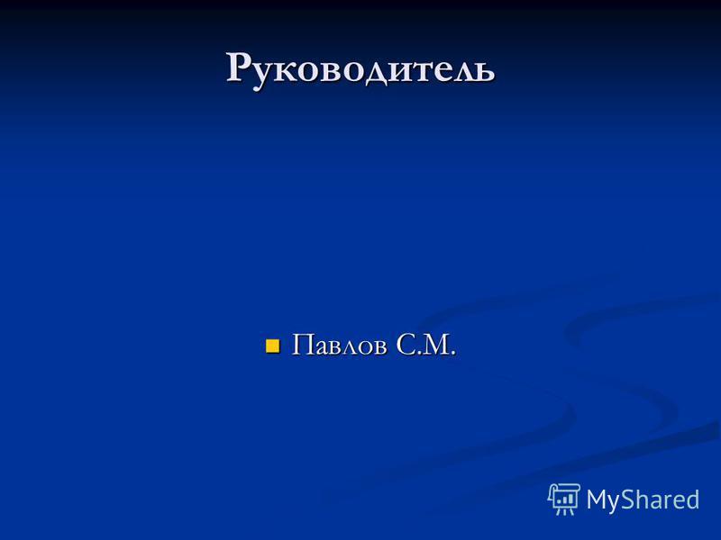 Руководитель Павлов С.М. Павлов С.М.