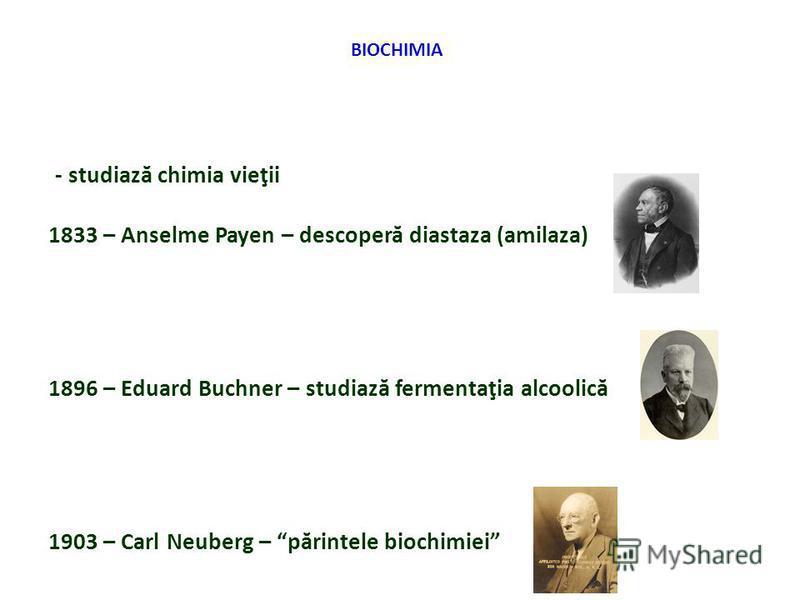 BIOCHIMIA - studiază chimia vieţii 1833 – Anselme Payen – descoperă diastaza (amilaza) 1896 – Eduard Buchner – studiază fermentaţia alcoolică 1903 – Carl Neuberg – părintele biochimiei
