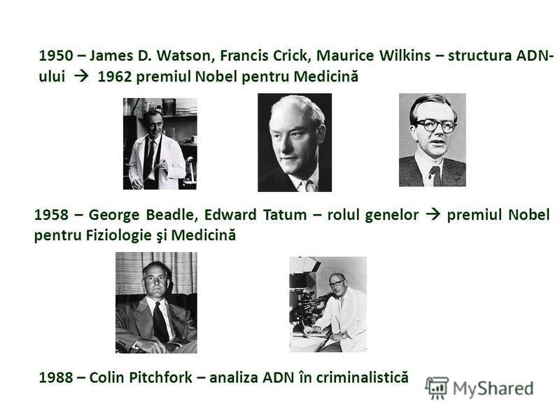 1950 – James D. Watson, Francis Crick, Maurice Wilkins – structura ADN- ului 1962 premiul Nobel pentru Medicină 1958 – George Beadle, Edward Tatum – rolul genelor premiul Nobel pentru Fiziologie şi Medicină 1988 – Colin Pitchfork – analiza ADN în cri