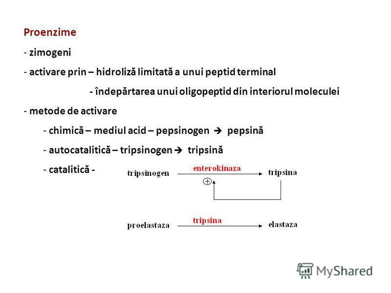 Proenzime - zimogeni - activare prin – hidroliză limitată a unui peptid terminal - îndepărtarea unui oligopeptid din interiorul moleculei - metode de activare - chimică – mediul acid – pepsinogen pepsină - autocatalitică – tripsinogen tripsină - cata