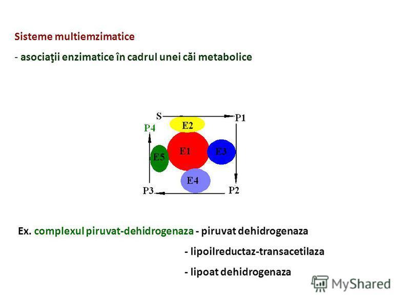 Sisteme multiemzimatice - asociaţii enzimatice în cadrul unei căi metabolice Ex. complexul piruvat-dehidrogenaza - piruvat dehidrogenaza - lipoilreductaz-transacetilaza - lipoat dehidrogenaza