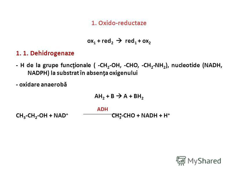 1. Oxido-reductaze ox 1 + red 2 red 1 + ox 2 1. 1. Dehidrogenaze - H de la grupe funcţionale ( -CH 2 -OH, -CHO, -CH 2 -NH 2 ), nucleotide (NADH, NADPH) la substrat în absenţa oxigenului - oxidare anaerobă AH 2 + B A + BH 2 CH 3 -CH 2 -OH + NAD + CH 3
