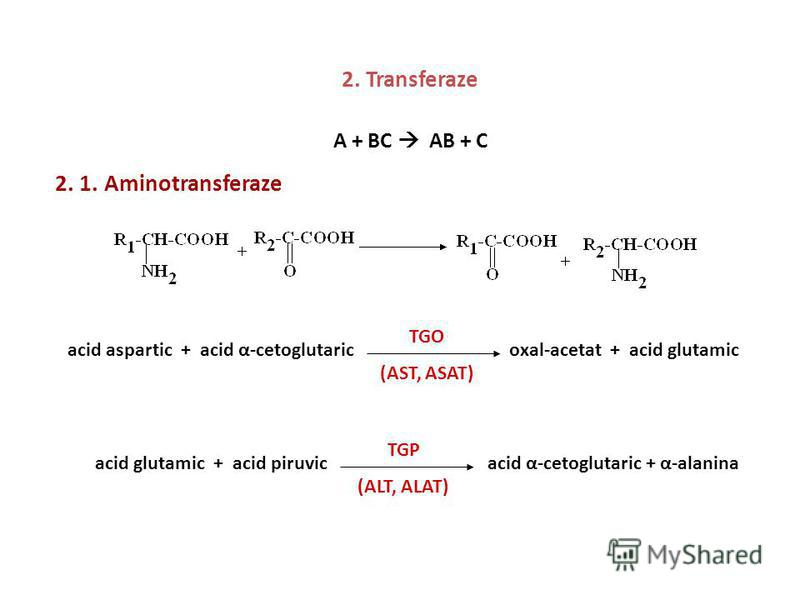 2. Transferaze A + BC AB + C 2. 1. Aminotransferaze acid aspartic + acid α-cetoglutaric oxal-acetat + acid glutamic TGO (AST, ASAT) acid glutamic + acid piruvic acid α-cetoglutaric + α-alanina TGP (ALT, ALAT)