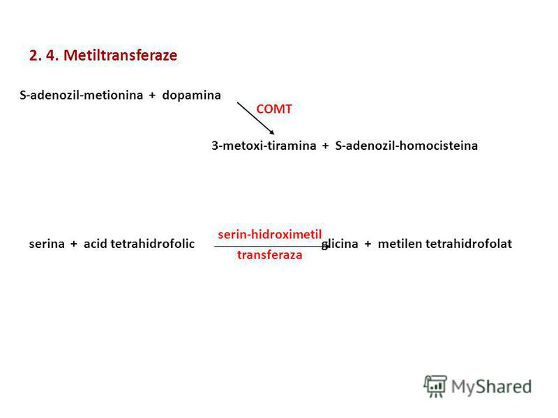 2. 4. Metiltransferaze S-adenozil-metionina + dopamina 3-metoxi-tiramina + S-adenozil-homocisteina COMT serina + acid tetrahidrofolic glicina + metilen tetrahidrofolat serin-hidroximetil transferaza