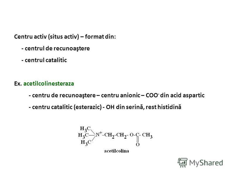 Centru activ (situs activ) – format din: - centrul de recunoaştere - centrul catalitic Ex. acetilcolinesteraza - centru de recunoaştere – centru anionic – COO - din acid aspartic - centru catalitic (esterazic) - OH din serină, rest histidină