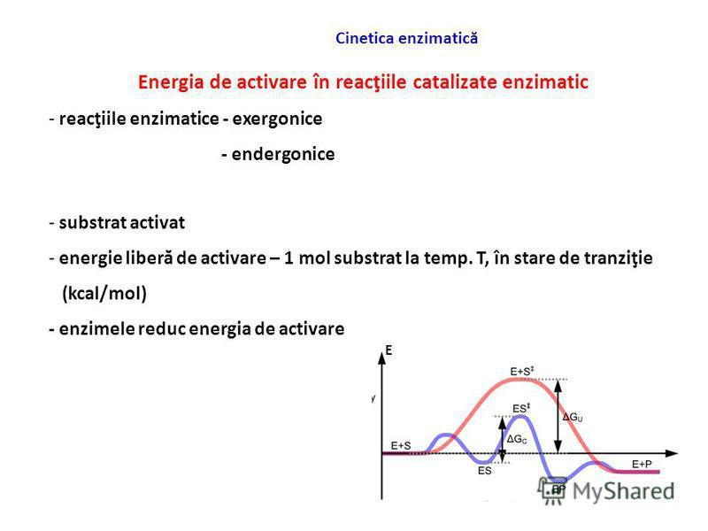 Cinetica enzimatică Energia de activare în reacţiile catalizate enzimatic - reacţiile enzimatice - exergonice - endergonice - substrat activat - energie liberă de activare – 1 mol substrat la temp. T, în stare de tranziţie (kcal/mol) - enzimele reduc