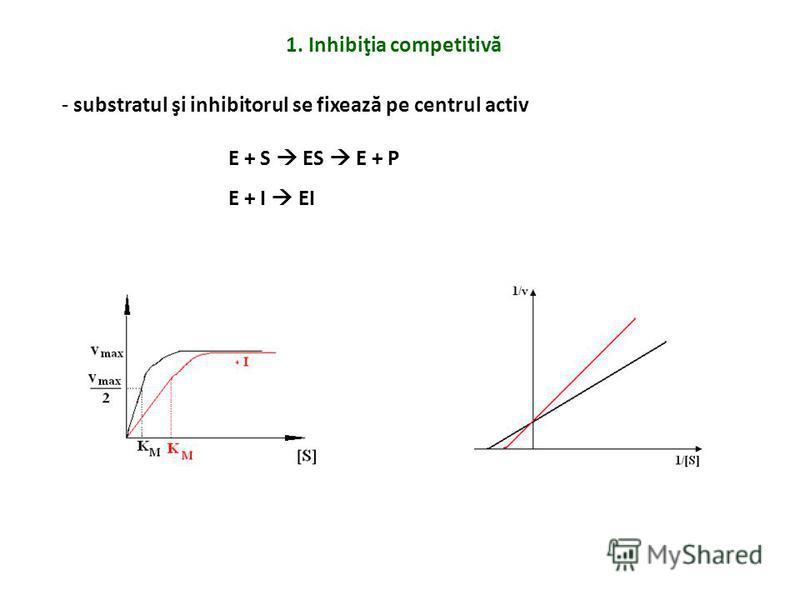 1. Inhibiţia competitivă - substratul şi inhibitorul se fixează pe centrul activ E + S ES E + P E + I EI