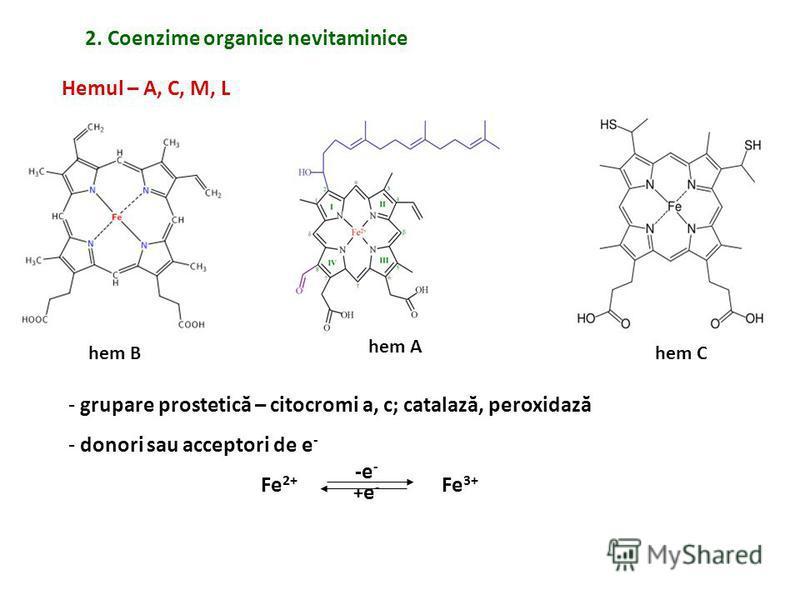 hem B hem A 2. Coenzime organice nevitaminice Hemul – A, C, M, L hem C - grupare prostetică – citocromi a, c; catalază, peroxidază - donori sau acceptori de e - Fe 2+ Fe 3+ -e - +e-+e-