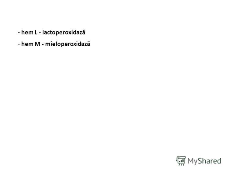 - hem L - lactoperoxidază - hem M - mieloperoxidază