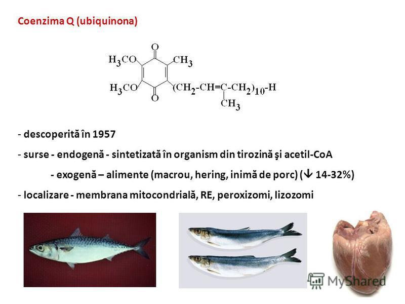 Coenzima Q (ubiquinona) - descoperită în 1957 - surse - endogenă - sintetizată în organism din tirozină şi acetil-CoA - exogenă – alimente (macrou, hering, inimă de porc) ( 14-32%) - localizare - membrana mitocondrială, RE, peroxizomi, lizozomi