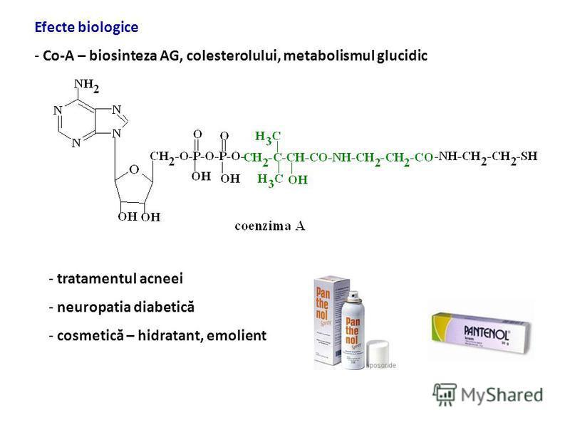 CoA, acil-CoA acid pantotenic panteteină transport activdifuzie pasivă - H 3 PO 4 4-fosfopanteteină hidrolaze IS fosforilază panteteinaza intestinală Absorbţie