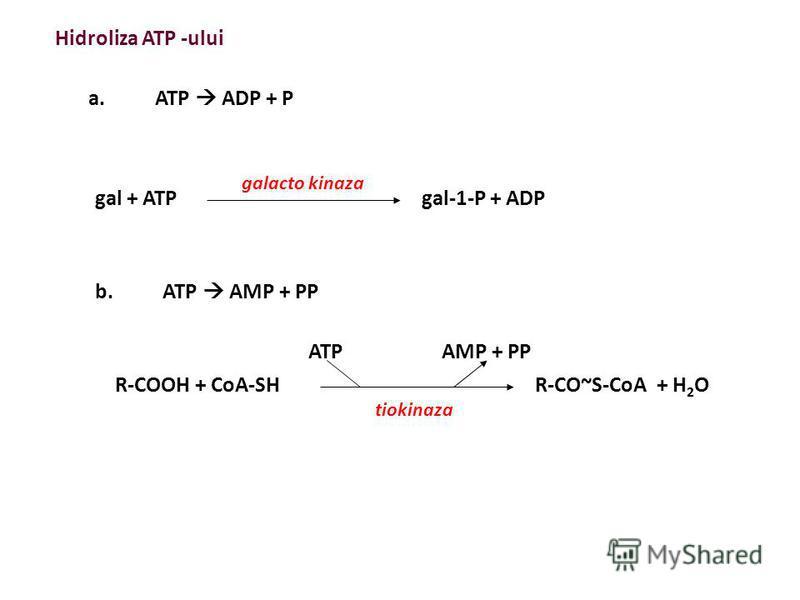 ΔG = - 7,3 kcal/mol - respingerea electrostatică între O - - stabilitatea crescută a produşilor de reacţie