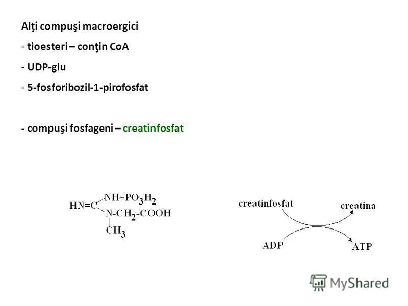 Energia eliberată prin hidroliză - fosfaţi cu energie înaltă – fosfoenolpiruvat (14,8), creatinfosfat (10,3) - fosfaţi cu energie joasă – pirofosfat (6,6), glicerol-3-P (2,2) ADP + P ATPAMP + PP ATP X AMP + ATP 2 ADP 2ATP + 2 P