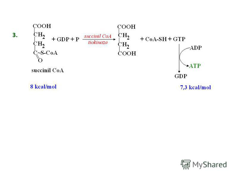 Fosforilarea la nivel de substrat 1. 2.