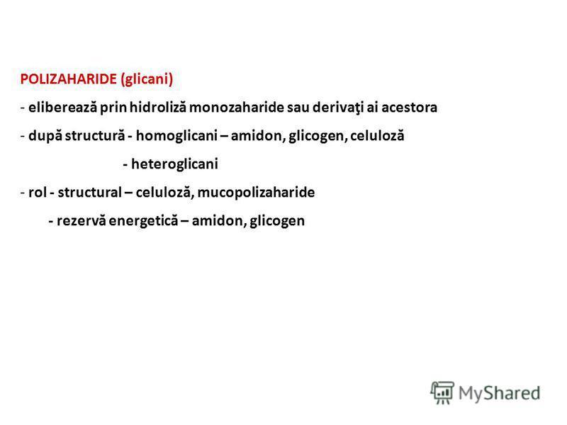 POLIZAHARIDE (glicani) - eliberează prin hidroliză monozaharide sau derivaţi ai acestora - după structură - homoglicani – amidon, glicogen, celuloză - heteroglicani - rol - structural – celuloză, mucopolizaharide - rezervă energetică – amidon, glicog
