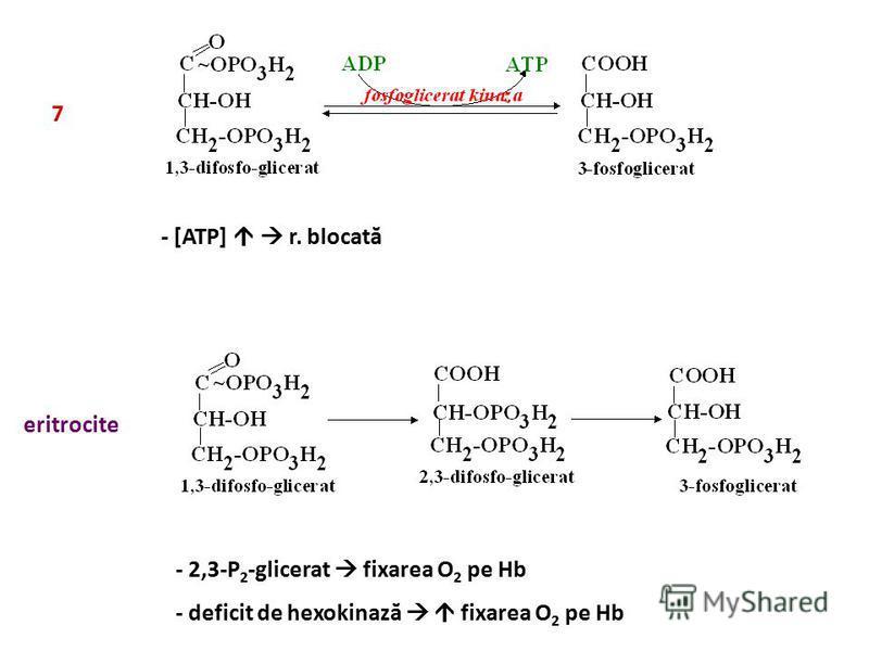 7 - [ATP] r. blocată eritrocite - 2,3-P 2 -glicerat fixarea O 2 pe Hb - deficit de hexokinază fixarea O 2 pe Hb