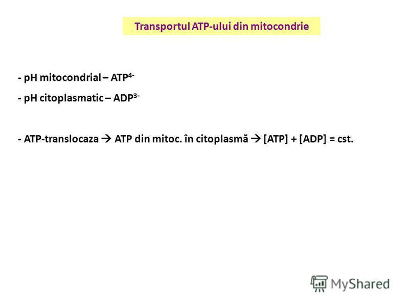 Transportul ATP-ului din mitocondrie - pH mitocondrial – ATP 4- - pH citoplasmatic – ADP 3- - ATP-translocaza ATP din mitoc. în citoplasmă [ATP] + [ADP] = cst.