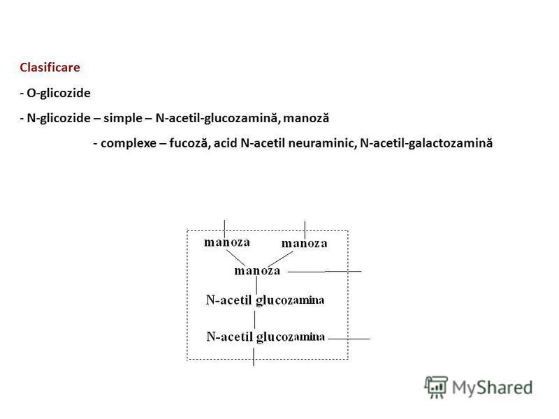 Clasificare - O-glicozide - N-glicozide – simple – N-acetil-glucozamină, manoză - complexe – fucoză, acid N-acetil neuraminic, N-acetil-galactozamină