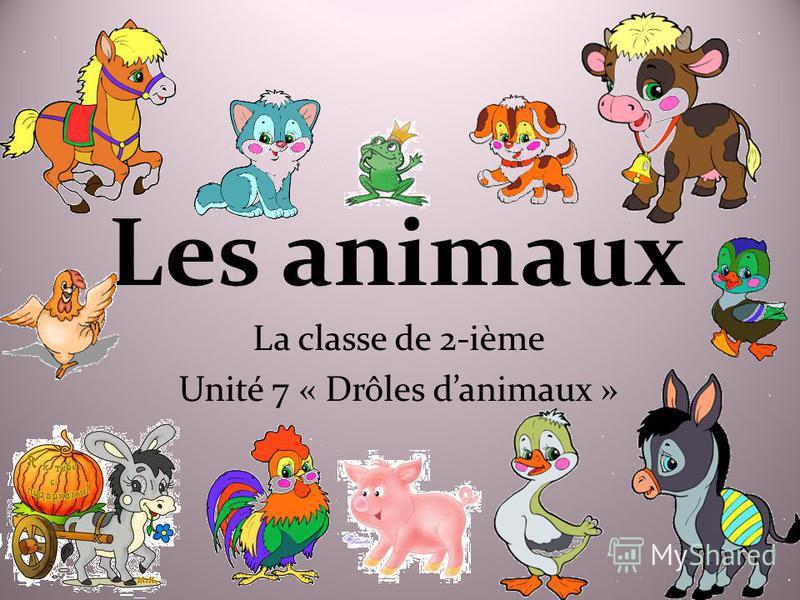 Les animaux La classe de 2-ième Unité 7 « Drôles danimaux »